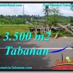 JUAL TANAH MURAH di TABANAN 35 Are di Tabanan Selemadeg