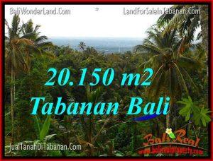 INVESTASI PROPERTI, DIJUAL MURAH TANAH di TABANAN BALI TJTB322