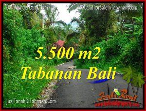 INVESTASI PROPERTY, JUAL TANAH di TABANAN TJTB323
