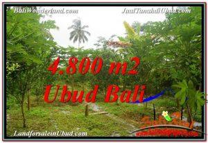 INVESTASI PROPERTI, TANAH MURAH DIJUAL di UBUD BALI TJUB571