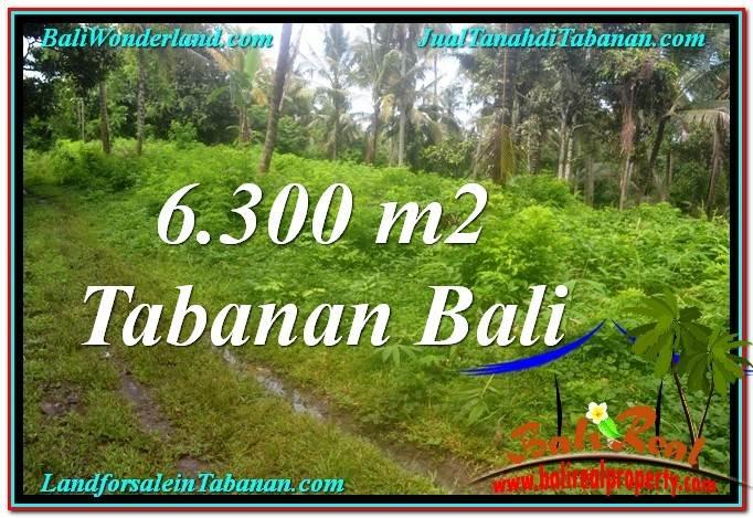 TANAH MURAH di TABANAN JUAL 6,300 m2 View kebun
