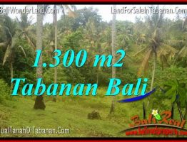 JUAL MURAH TANAH di TABANAN 13 Are View laut dan sawah