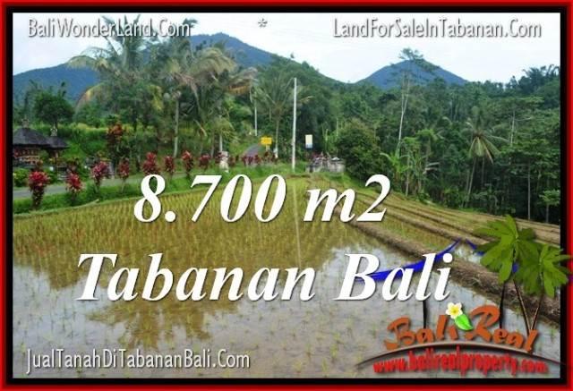 JUAL MURAH TANAH di TABANAN BALI 8,700 m2 View gunung dan sawah