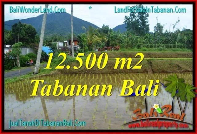 JUAL MURAH TANAH di TABANAN 12,500 m2 View gunung dan sawah