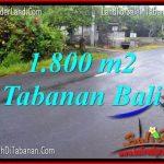 JUAL TANAH di TABANAN BALI 18 Are di Tabanan Kota