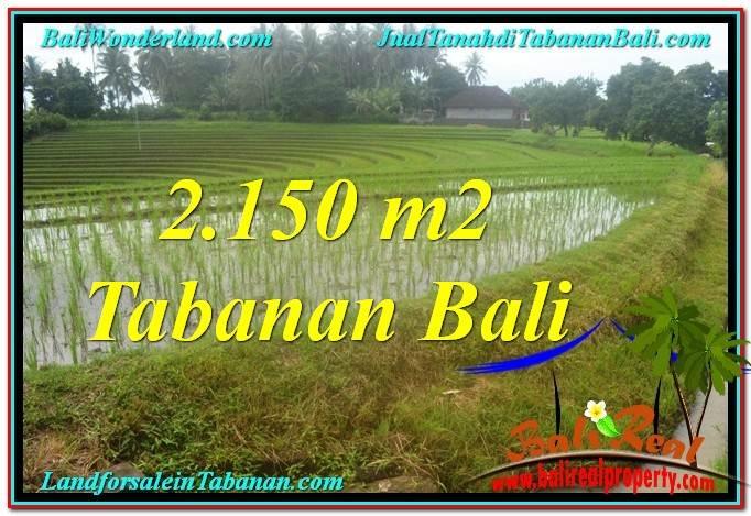 JUAL MURAH TANAH di TABANAN 2,150 m2 View gunung dan sawah