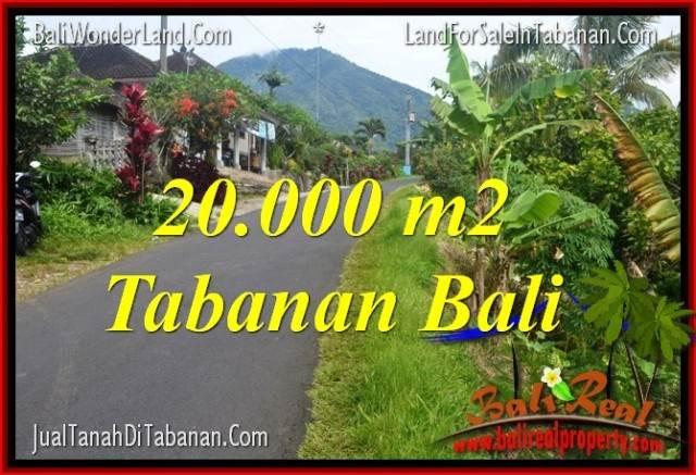DIJUAL TANAH MURAH di TABANAN 200 Are di Tabanan Penebel