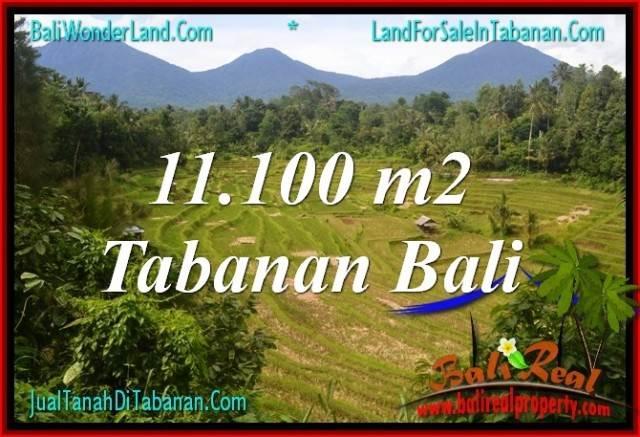 INVESTASI PROPERTI, JUAL MURAH TANAH di TABANAN TJTB320