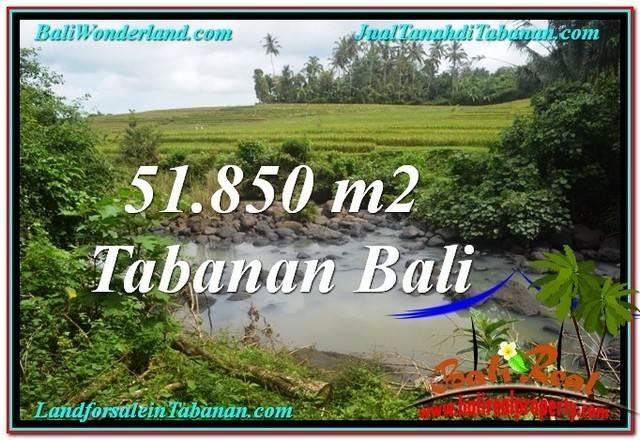 JUAL TANAH MURAH di TABANAN 51,850 m2 View Sawah dan Sungai