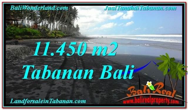 TANAH di TABANAN JUAL MURAH 114.5 Are View Laut, Gunung dan sawah