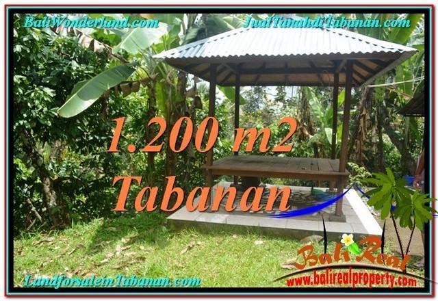 INVESTASI PROPERTY, JUAL TANAH MURAH di TABANAN TJTB294