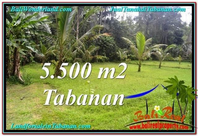TANAH DIJUAL MURAH di TABANAN TJTB295