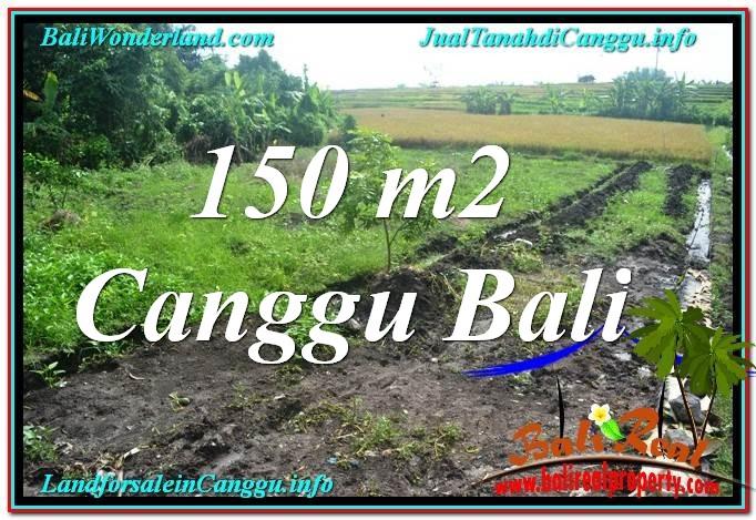 JUAL TANAH di CANGGU Untuk INVESTASI TJCG213