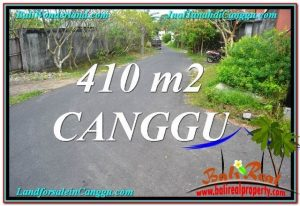 JUAL MURAH TANAH di CANGGU BALI 4.1 Are Lingkungan Villa