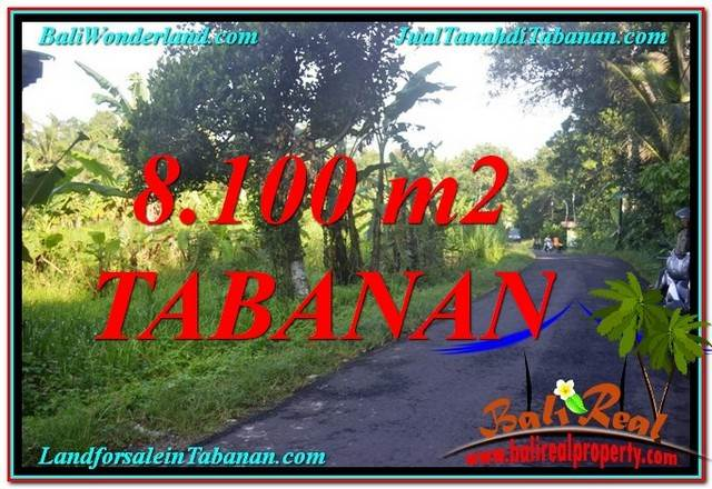 JUAL TANAH di TABANAN 81 Are di Tabanan Marga
