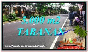 TANAH MURAH DIJUAL di TABANAN BALI Untuk INVESTASI TJTB332