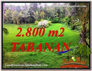 JUAL MURAH TANAH di TABANAN 28 Are View  sawah