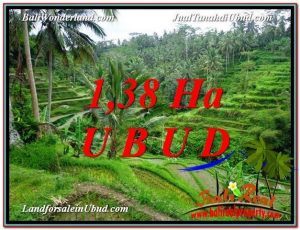 TANAH JUAL MURAH  UBUD 138 Are View Sawah dan tebing  link Villa