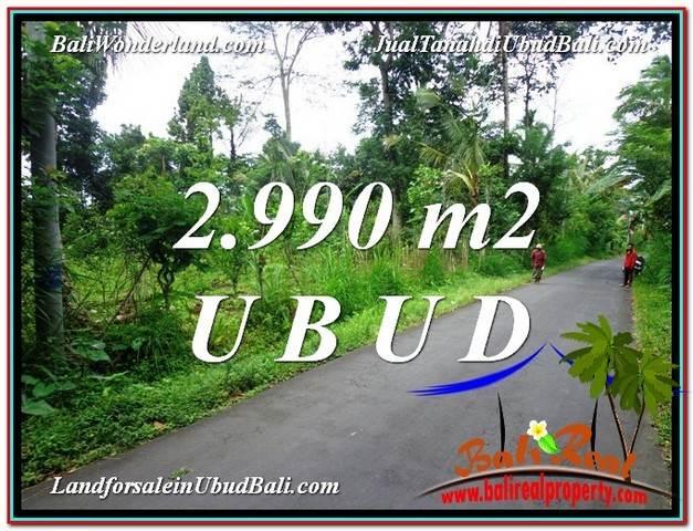 TANAH MURAH JUAL UBUD 30 Are View kebun dan Tebing