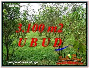 JUAL TANAH MURAH di UBUD TJUB593