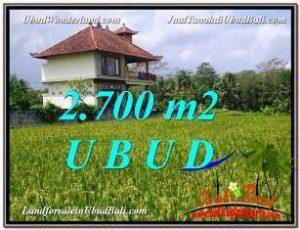 TANAH di UBUD JUAL MURAH 2,700 m2  View Sawah link Villa