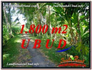 TANAH di UBUD DIJUAL MURAH Untuk INVESTASI TJUB597