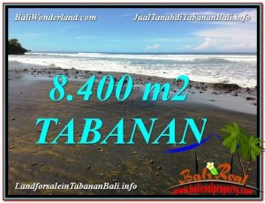 JUAL TANAH MURAH di TABANAN 8,400 m2  View laut dan Lingkungan Villa