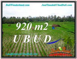 DIJUAL MURAH TANAH di UBUD BALI 9 Are di Ubud Payangan