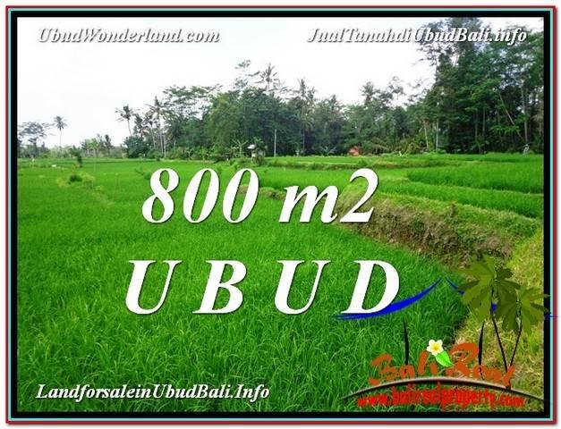 JUAL TANAH MURAH di UBUD 800 m2 di Ubud Pejeng
