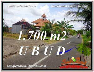 JUAL TANAH MURAH di UBUD BALI 17 Are di Sentral Ubud