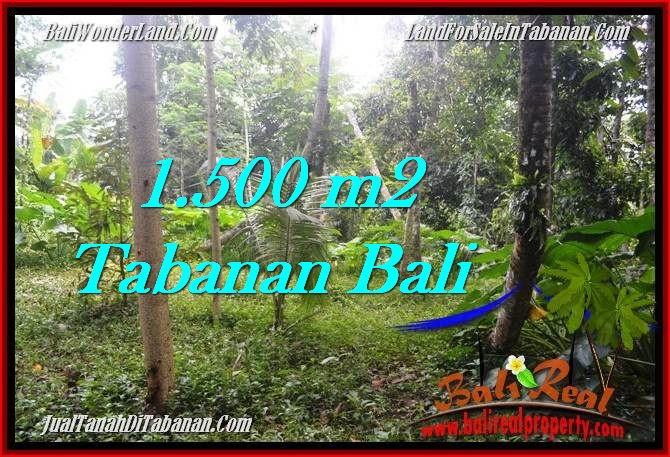 JUAL TANAH MURAH di TABANAN 1,500 m2 di Tabanan Penebel TANAH MURAH DIJUAL di TABANAN BALI Untuk INVESTASI TJTB279