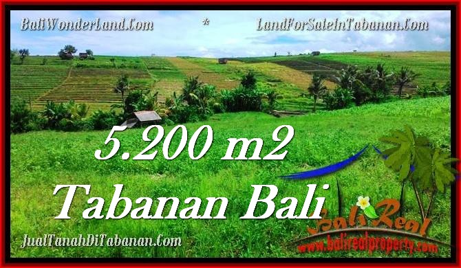 TANAH MURAH JUAL TABANAN 52 Are View sawah dan sungai