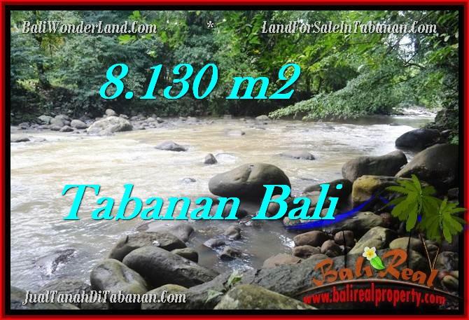 JUAL TANAH di TABANAN BALI 81.3 Are di Tabanan Selemadeg