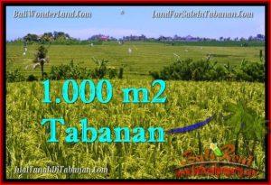 INVESTASI PROPERTI, TANAH MURAH DIJUAL di TABANAN BALI TJTB266