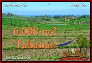 JUAL TANAH di TABANAN BALI 60 Are View Laut, Gunung dan sawah