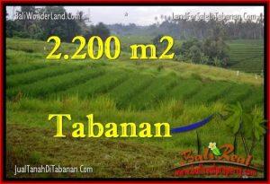 JUAL TANAH di TABANAN BALI 22 Are View Laut dan sawah