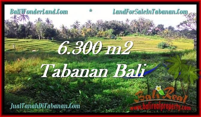 TANAH di TABANAN DIJUAL MURAH Untuk INVESTASI TJTB275
