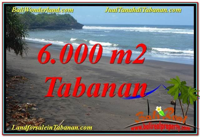 INVESTASI PROPERTY, TANAH MURAH di TABANAN DIJUAL TJTB345