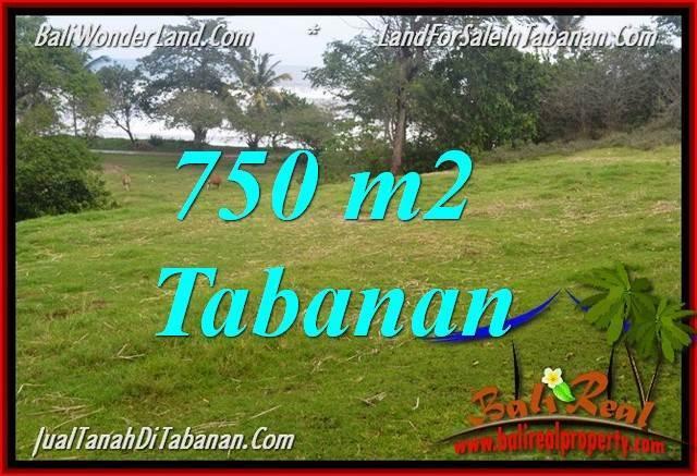 TANAH di TABANAN BALI DIJUAL MURAH 750 m2 di Tabanan Selemadeg