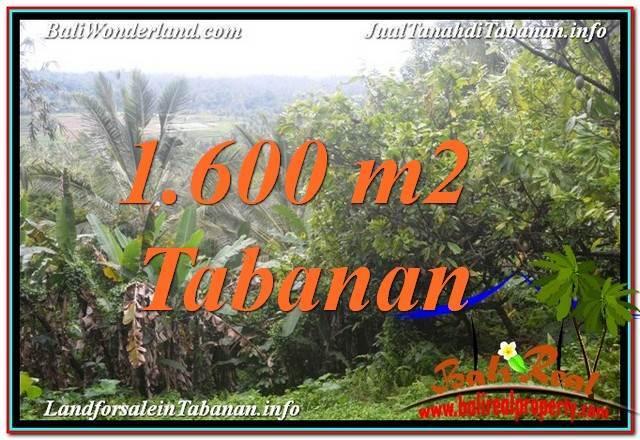 JUAL TANAH di TABANAN BALI Untuk INVESTASI TJTB348