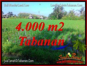 TANAH MURAH JUAL   TABANAN 40 Are View sawah