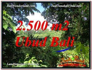 DIJUAL TANAH di UBUD Untuk INVESTASI TJUB605