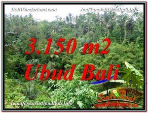 TANAH di UBUD BALI DIJUAL 3,150 m2 di Ubud Tegalalang