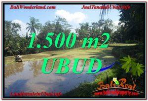 TANAH DIJUAL MURAH di UBUD BALI 1,500 m2 di Ubud Payangan
