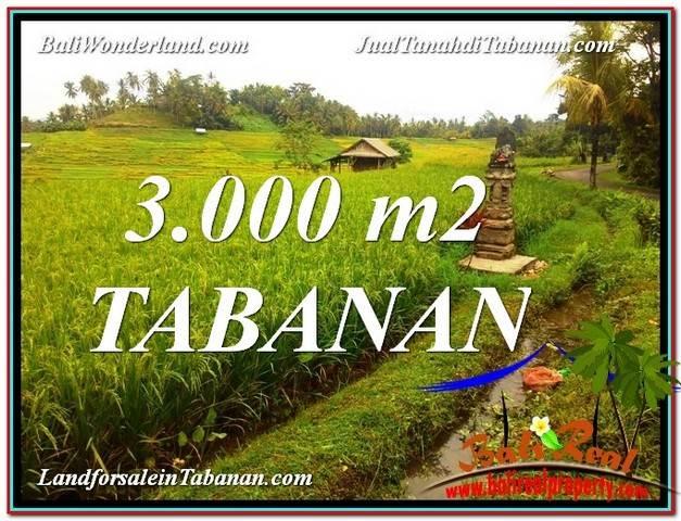 TANAH DIJUAL di TABANAN BALI 3,000 m2 View gunung dan sawah