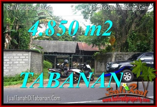 JUAL TANAH di TABANAN 4,850 m2 di Tabanan Bedugul