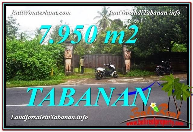 TANAH MURAH di TABANAN BALI DIJUAL 79.5 Are View Kebun