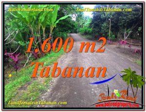 JUAL MURAH TANAH di TABANAN BALI 1,600 m2  View Kebun dan Sungai