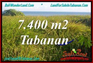 TANAH di TABANAN BALI DIJUAL MURAH 7,400 m2 di Tabanan Selemadeg
