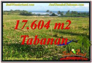 JUAL TANAH di TABANAN BALI 176.04 Are di Tabanan Kerambitan